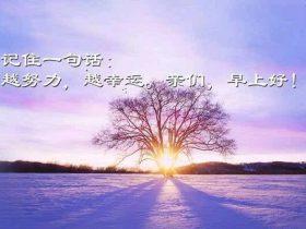 与其终日冥想人生有何意义,不如做点有意义的事