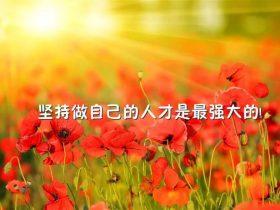 朗读者郑渊洁《父与子》
