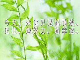 朗读者刘阳我,堂吉诃德《不会成真的梦》