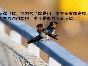 朗读者徐和颐艾青《时代》