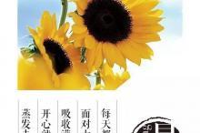 郭敬明经典语录